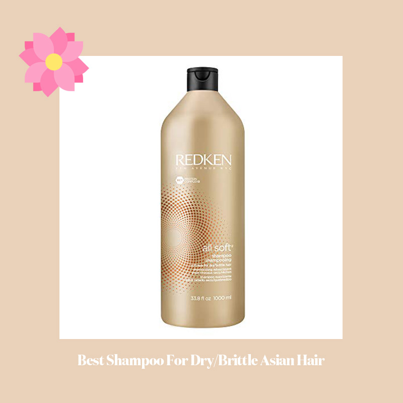 Best Shampoo For Dry Brittle Asian Hair