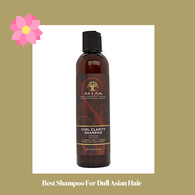 Best Shampoo For Dull Asian Hair