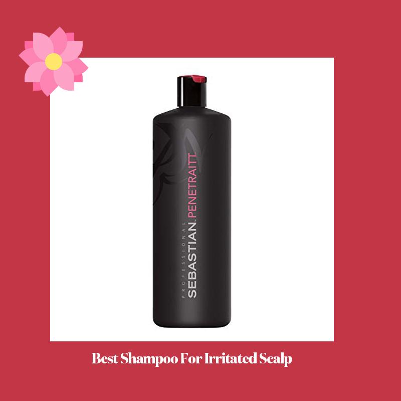 Best Shampoo For Irritated Scalp